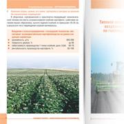 Голландская технология - основа высокорентабельного картофелеводства (разворот)